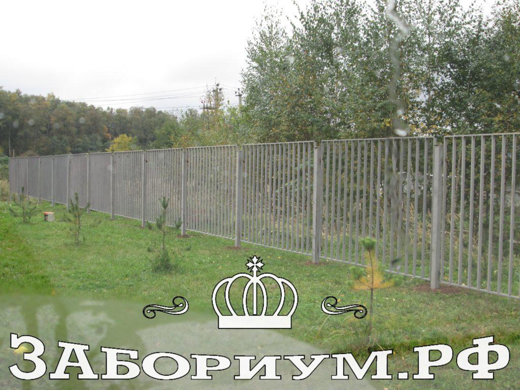 IMG 0017 1024x768 Забор в Дмитрове