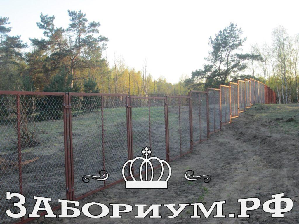 Забор из секций из сетки-рабицы в г. Клин