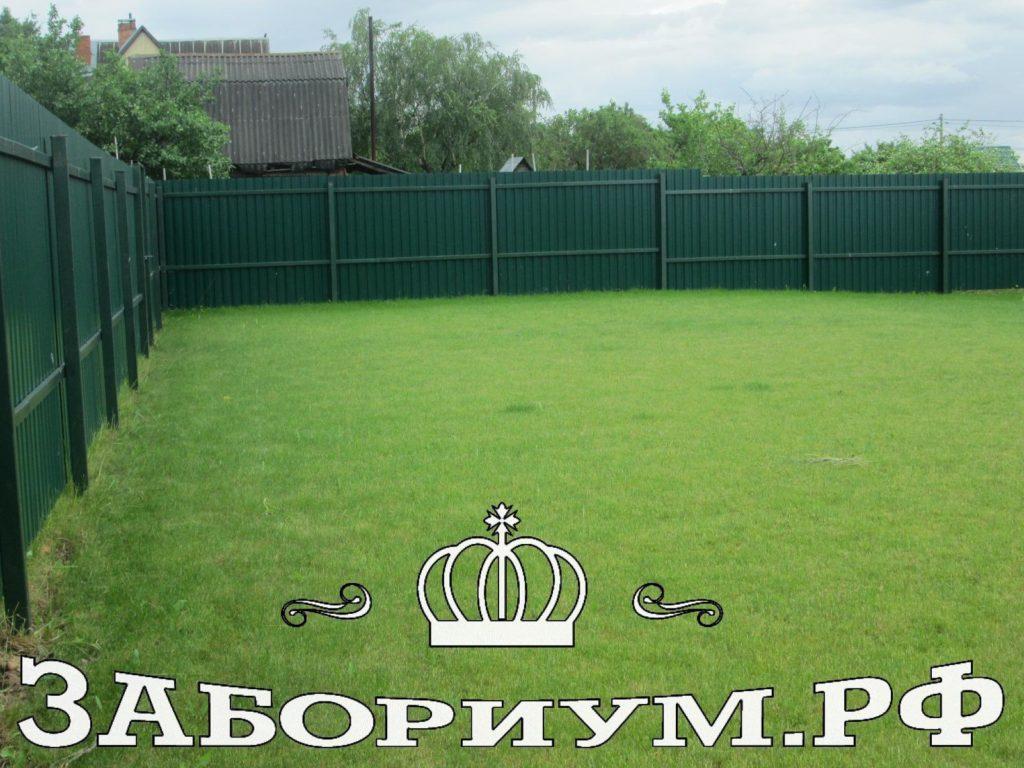 Забор из профнастила с покраской хаммерайтом столбов и лаг в цвет забора в г. Дмитров