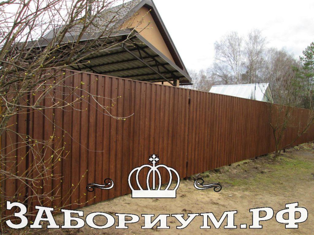 смоленск 2392 1024x768 Наталья Д.