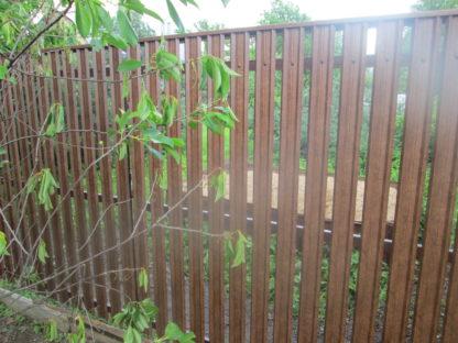 Забор из двухстороннего евроштакетника под дерево в г. Лобня.