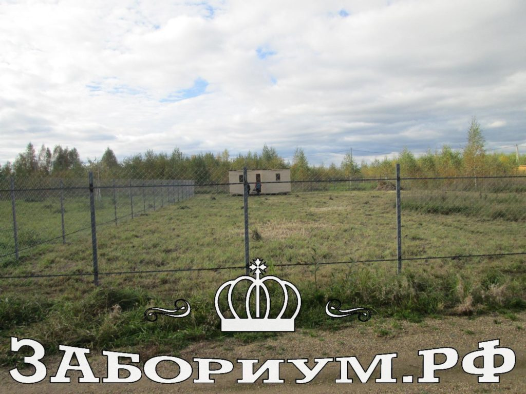 сетка рабица 0021 1024x768 Забор в Дмитрове