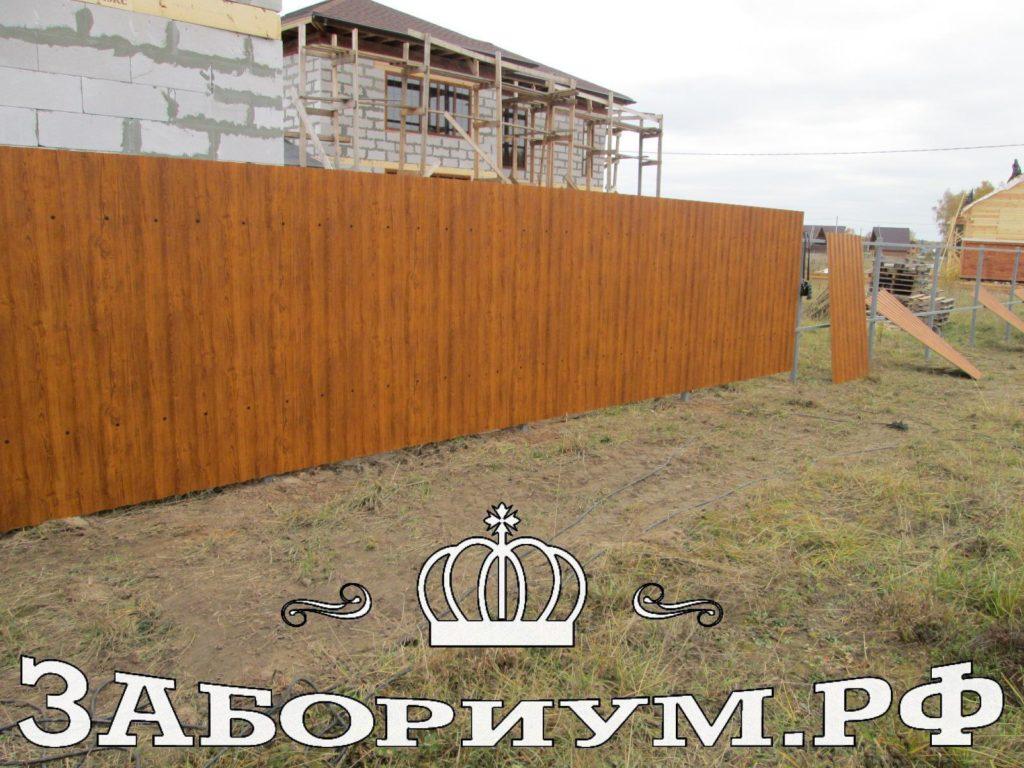 Забор из двухстороннего профнастила  «золотой дуб» в г. Можайске