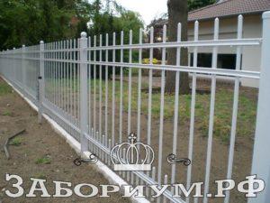 cat 7 000001 300x225 Забор в Пушкино для дома и дачи