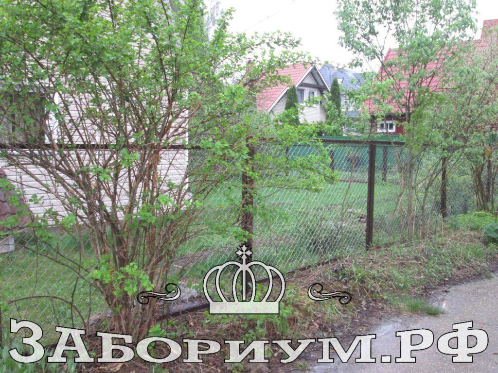 Забор секционный из сетки-рабицы в г. Мытищи